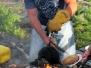 Våffelgräddning Kalahatten 19 juli 2011